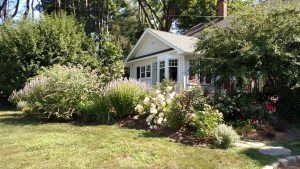 Cottage Rain gardens